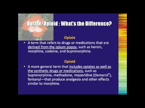 Buprenorphine Treatment A Training for Multidisciplinary Addiction Professionals Part1