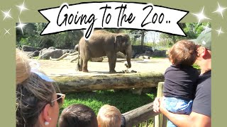 FUN TRIP TO THE ZOO | WHAT WILL WE FIND? | AUCKLAND ZOO