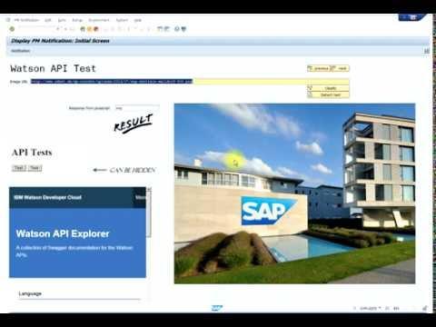 Calling IBM Watson javaScript API from SAP Screen