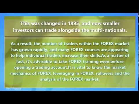 Which Would You Rather Do Forex Or Daytrading