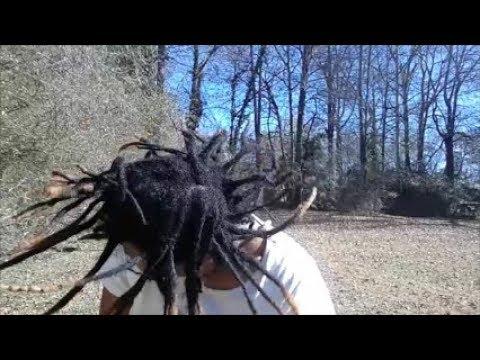 ❤ Shaking my freeform locs - 2Years 11Months! ❤