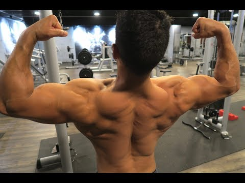 Ultimate Back Workout for THICKNESS with Twin workout