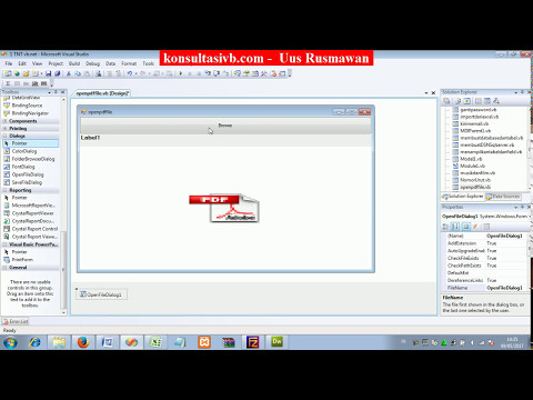 how to open pdf file with vb.net