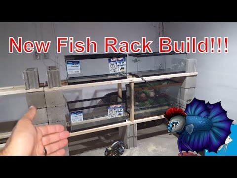 Improved Fish Room Rack System Built
