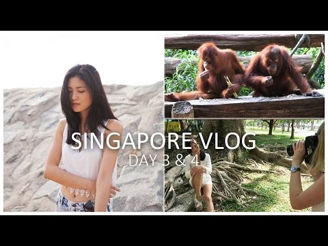 Photo Shoot In Singapore + Zoo Tour!!  | VLOG | DAY 3 & 4