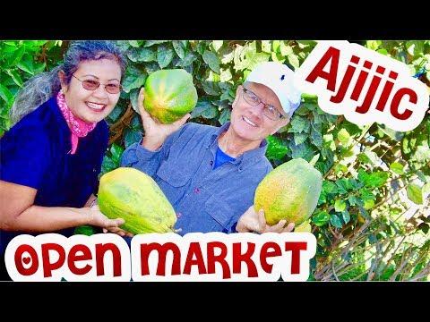 Ajijic Cost of Living: retirement community  Lake Chapala  Open Market Savings retiring