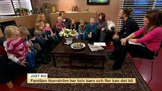 Familjen Norrström har tolv barn och fler kan det bli - Nyhetsmorgon (TV4)