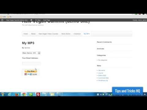 WordPress Paypal Payment Accept