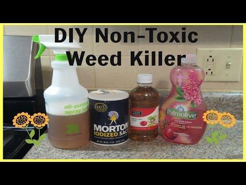 DIY Non-Toxic Weed Killer - Quick & Super Easy!