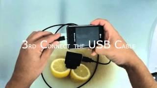 Lemon CellPhone Charger