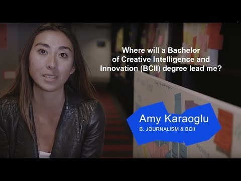 Where will a Bachelor of Creative Intelligence and Innovation Degree lead me?