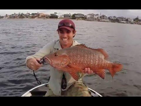 Fishing the Gold Coast Monster Jacks Digital Video Trailer