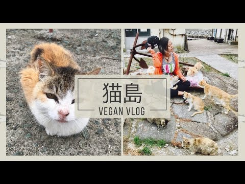 🐈 AOSHIMA CAT ISLAND [VLOG]