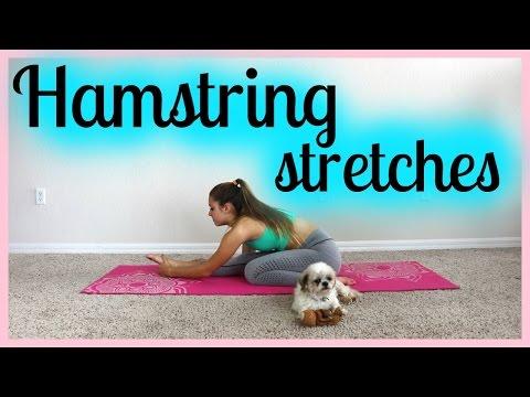 Hamstring Stretches (Best Hamstring Stretch Ever)