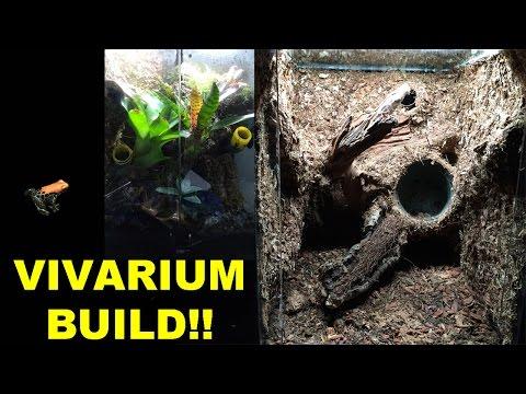 How to Build a Vivarium with a custom background!!