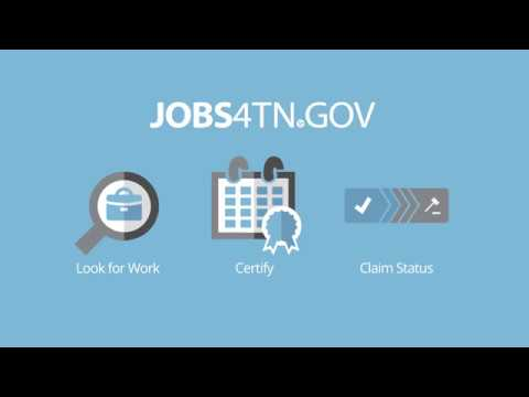 Unemployment Benefits Timeframe Explained, Part 2: Weekly Job Searches & Decision-Making Process
