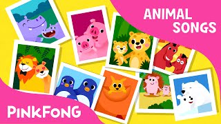 Animal Families | Animal Songs | PINKFONG Songs for Children