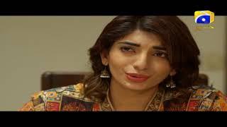 Qaid - Best Scene 41   HAR PAL GEO