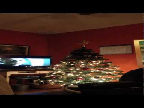 Easy Christmas Tree Clean up