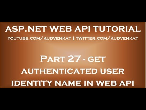 How to get authenticated user identity name in asp net web api