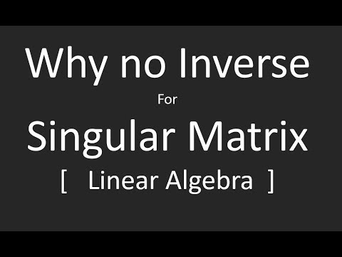Why Singular Matrix does not have Inverse
