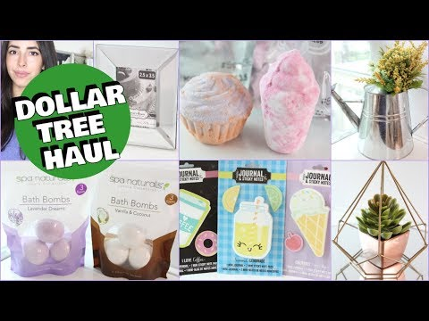 DOLLAR TREE HAUL SPRING MAY 2018