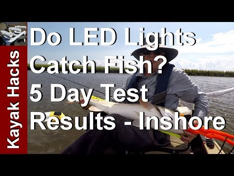 Do Flashing LED Fishing Lures Work - Inshore Fishing Test and Review