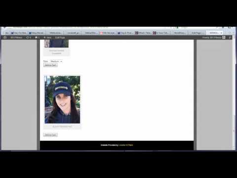 how to paypal shopping cart wordpress plugin