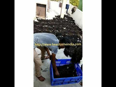 Unprocessed raw curly India hair distributor - wholesale hair vendor - Absolutely No Chemicals