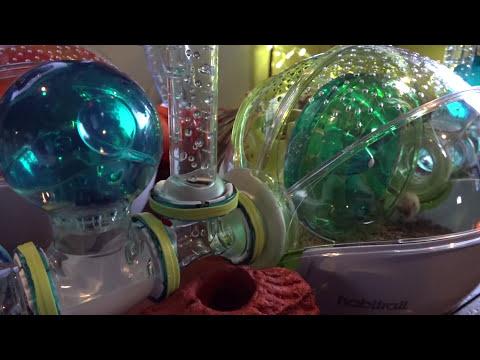 Habitrail Village Loft, Studio, Dwarf Habitat, Cristal for Robo Dwarf Hamsters