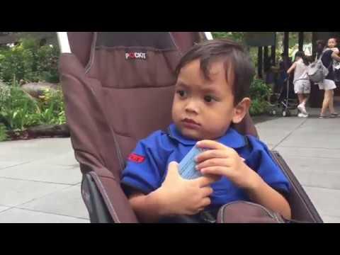 Vlog  Family trip Singapore Bara (2) River Safari Singapore Zoo - Bugis - Orchard Road