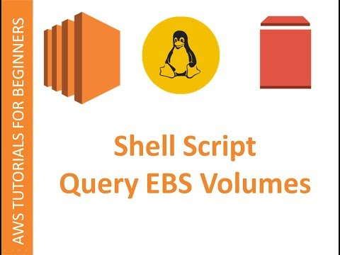 AWS CLI  | Shell script to Query EBS Volumes
