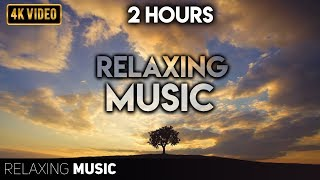 2 Hours of Relaxing Music, Healing, Meditation Music, Relax, Calm Music, Sleep Music,Pregnancy Music