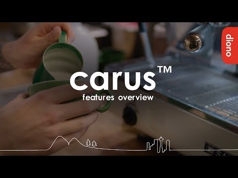 Diono Carus Complete carrying system with detachable backpack