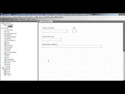 Creating Data Entry Forms Questionnaires in Epi Info 7
