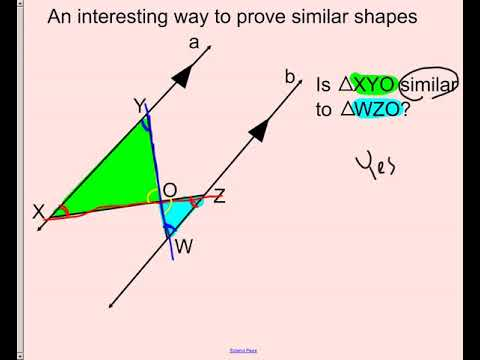 lesson - similar and congruent shapes