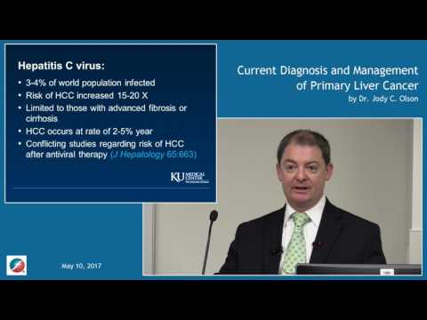 Current Diagnosis and Management of Primary Liver Cancer