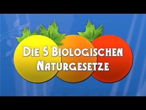 Die 5 Biologischen Naturgesetze - Die Dokumentation