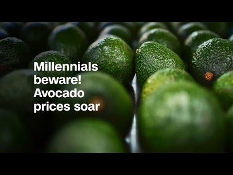 Millennials beware! Avocado prices soar