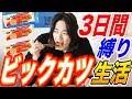 【駄菓子生活】はるくんは3日間ビックカツだけで生活する事はできるのか?【縛り生活】