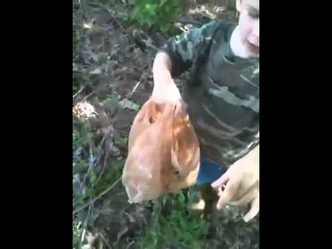 Me an Kooper mushroom hunting in early may
