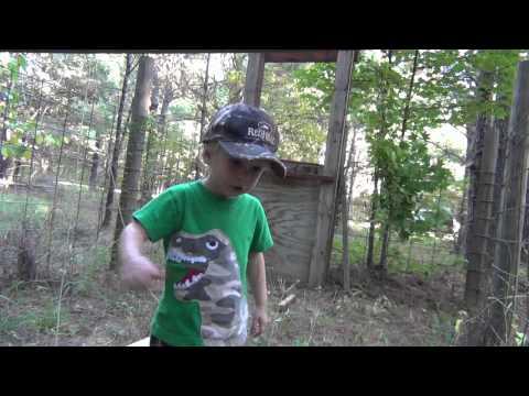 Hog Trap Door and Trigger Design