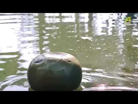 Xxx Mp4 Hot Podma Nodir Majhi Video Young Teen Roopa Ganguly Super Hot Scene Transparent Cloths 3gp Sex