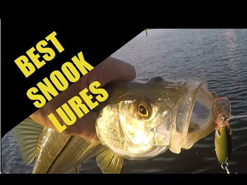 Best Snook Fishing Times, Lures and Locations