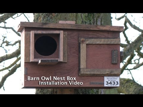 Barn Owl Nest Box Instruction Video 2013