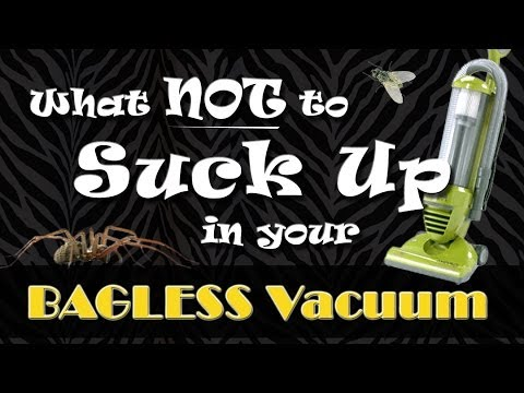 What NOT to suck up with a BAGLESS vacuum