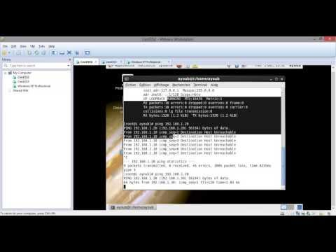 Connection between  three virtual machines in vmware