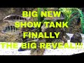 BIG NEW SHOW TANK! FINALLY, THE BIG REVEAL!!!