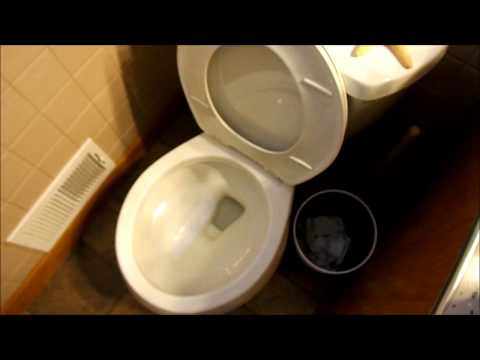 Low Flow Toilets are NOT Sanitary!!!