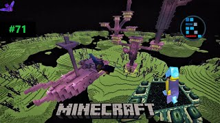 MINECRAFT | RON WENT TO END CITY TO GET ELYTRA FOR HIS FRIENDS